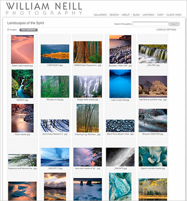 Photoshelter Image Search